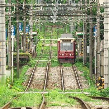 都電荒川線は、東京都内北部の未だ開発が行われていない地域を走る路線。沿線には懐かしい町並みや寺社、自然たっぷりの公園が残っていて、1日かけてのんびり散策したいエリアです。