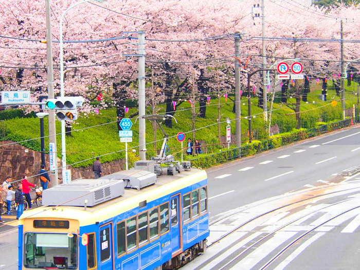 王子駅からすぐの飛鳥山公園は、江戸時代から続く桜の名所。小高い丘の上にある公園ですが、実は都内で一番低い山(非公式)だとか。 桜と1両だけで走る都電のジオラマを見ているような風景が、カメラファンにはたまらない魅力ですね。