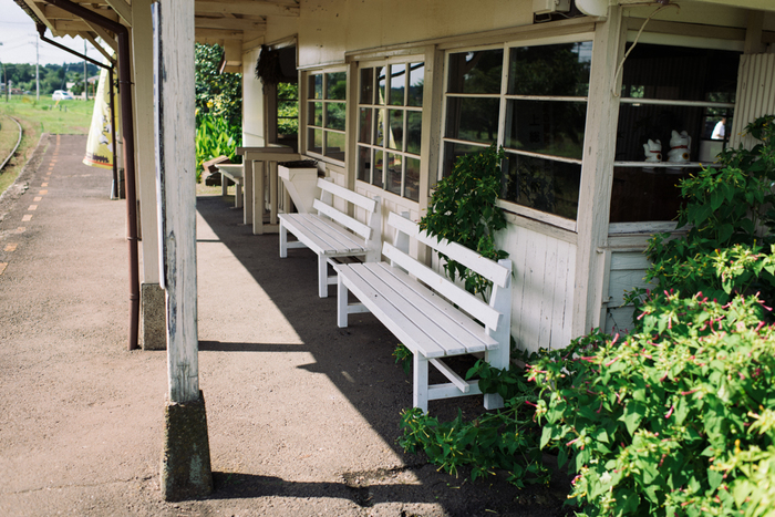 白いベンチに座ってぼーっとするのも良さそうですね♪