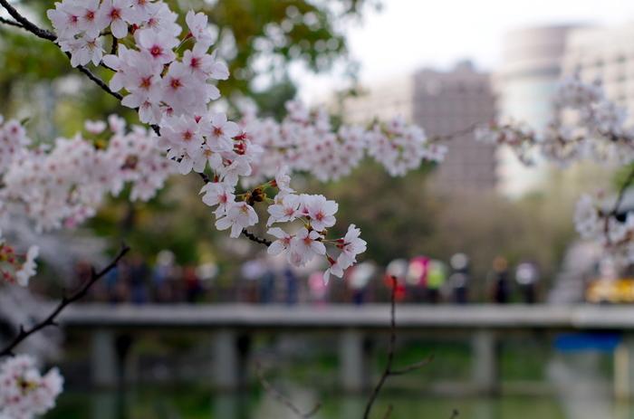 知らない街をブラリと散策するのは、日常を忘れ自分らしさを取り戻してくれますね。名古屋、訪ねてみたい街のひとつです。