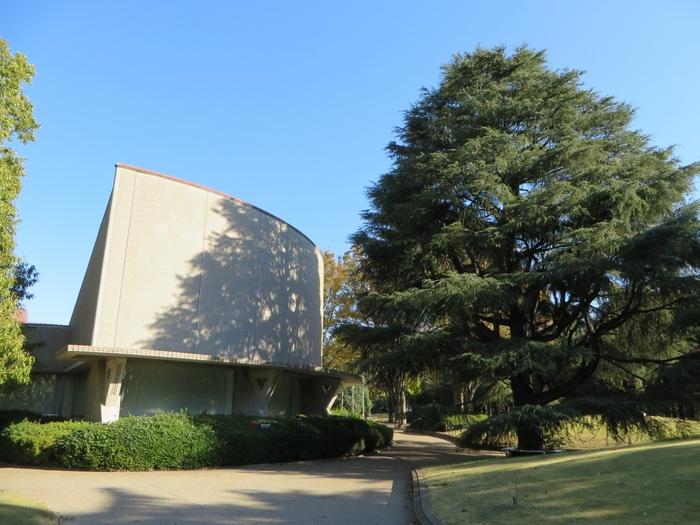 世田谷美術館は、新緑が楽しめる砧公園内にある美術館です。緑に面したカフェもあり、訪れたただけで癒されるスポットとして人気です。