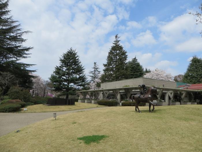 世田谷美術館は砧公園の北門のすぐ側にあります。春には西門から入って、桜や新緑の中を散策してから美術館へとたどり着くコースがおすすめ。さまざまな花が咲き野鳥が集まる景色を眺めながら、美術館を訪れてみてくださいね。