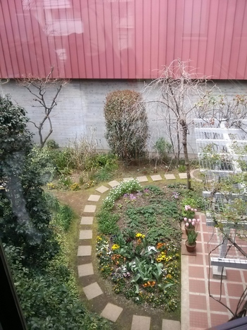 美術館内の中庭には、愛らしい季節の花も咲いています。個人宅として使われていた庭はどこか素朴で癒されるスペースです。