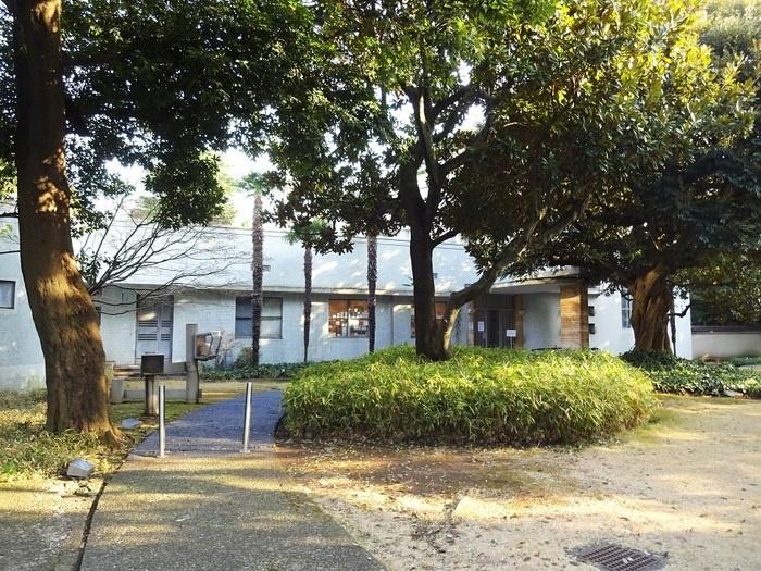建物は、第一生命館なども設計した近代日本の建築家 渡辺仁氏の設計によるもの。個人邸宅の趣が残った、戦前建築の懐かしさも味わえる独特のムードを持った美術館です。