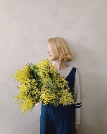 春を告げる花として親しまれている『ミモザ(Mimosa)』。 眩しいほどの鮮やかな黄色と、ポンポン状の可憐な花が特徴のミモザは、上品で優雅な香りも魅力です。 毎年この時期になると、お部屋に飾りたくなる方も多いのではないでしょうか? 今回はミモザの活け方や飾り方のポイントをはじめ、おしゃれなインテリア実例などをご紹介します♪ まずはミモザの特徴から見ていきましょう。