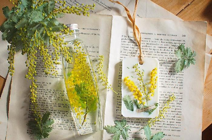 こちらはおしゃれなインテリアとして人気の「バーバリウム」と、優雅な香りを楽しめる「ワックスバー」です。どちらも手作りされたそうですが、ミモザの鮮やかな黄色い花がとても美しいですね。