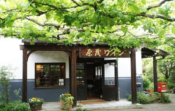JR勝沼ぶどう郷駅から、ぶどう畑の中の道を歩いて約20分。ぶどうや桃の畑が並ぶ道から1本入ったところに「Cafe Casa da Noma(カーサ・ダ・ノーマ)」はあります。1924年に創業した老舗ワイナリー「原茂ワイン」が、春から秋の期間(4月~11月)に限定営業する自然派カフェ。明治時代に建てられた白壁の母屋のレトロな佇まいがステキ。