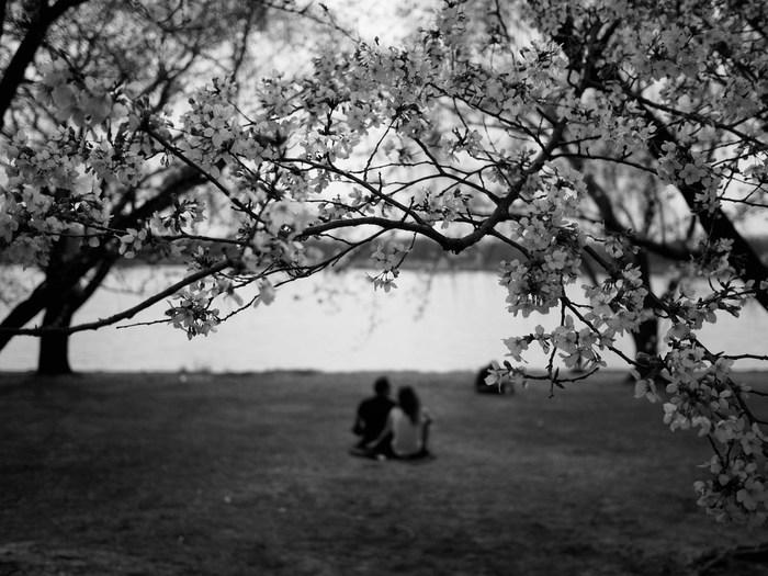 春は、「別れ」と「出会い」が多い季節ですよね。新たな挑戦、新たな環境に身をおいたりと、エネルギッシュに心機一転を図ることが多い一方、いつも一緒に過ごしていた人と離れたり、引っ越しで愛着のあった物を処分しなければならないことも…。