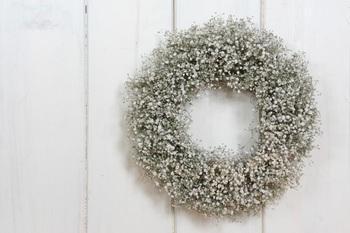 5月頃から花を咲かすかすみ草もドライフラワーの人気花材。花束やアレンジでは脇役になりがちですが、思い切ってかすみ草ONLYにしてみると素敵な風合いのリースに仕上がります。控えめながら繊細な存在感で、雰囲気のあるお部屋づくりに一役買います。