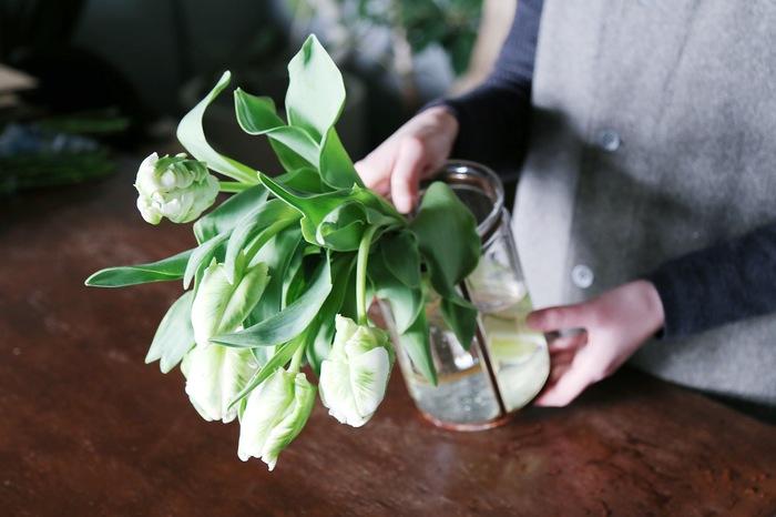 また、チューリップの独特なフォルムを楽しむには、透明なガラス花瓶がおすすめ。茎の緩やかなカーブに沿って、片側に流すように活けると上品です。