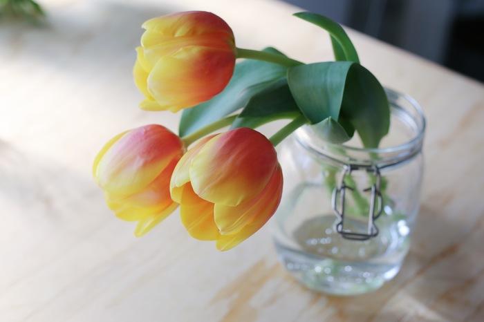 単品でざっくりと活ける定番の飾り方以外にも、チューリップを素敵に飾る方法はたくさん♪その時その時の茎の曲がり方や花の状態に合わせて、飾り方を変えるのも醍醐味ですね。ガラスジャーに活けてカジュアルな印象に。口がすぼまっているので、花を固定しやすいというメリットもありますね。