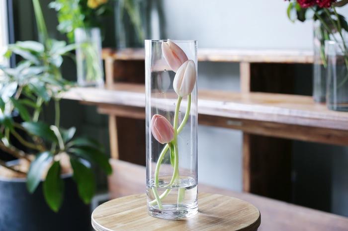 茎が伸びて花瓶の縁から垂れ下がってしまったら、背の高い細見の花瓶にすっぽりと入れてみても素敵です。数本、ランダムな長さにカットして活けるだけの簡単アレンジ。