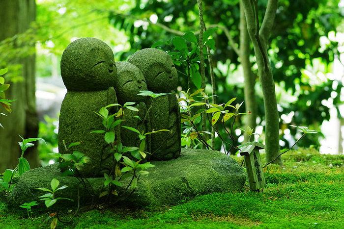都心から約1時間で訪れることができる古都鎌倉。鎌倉は自然に溢れ、お寺もあり見所も満載の町です。そんな鎌倉にはこのところチョコレート専門店が続々と増えているんですよ。