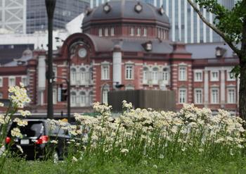東京ステーションギャラリーは、1988年に東京駅の中に誕生しました。2012年に東京駅の復原工事に伴って、リニューアルオープン。アクセスの良い美術館なので、忙しい方でもお仕事帰りに気軽に立ち寄れる美術館です。