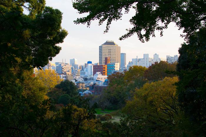 江戸期には「赤ひげ」で知られる診療所が開かれ、関東大震災後には避難場所になりました。 園内の高台から小日向方面を望む。高い建物のなかった江戸期には富士山も望めたそうです。ノッポビルは小石川パークタワー。