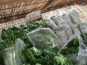 収穫されたばかりの野菜がカフェの外で販売されることも♪