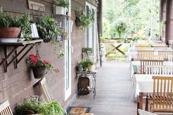ウッディーな壁には、インテリアとしてグリーンや花などが置かれています。春のあたたかな光りに照らされたテラス席で食べるのもいいですね。