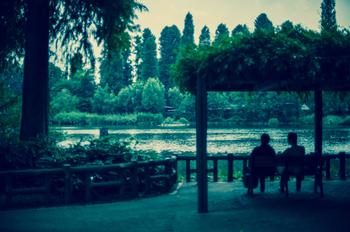 旧石器時代の遺跡も発掘されているという、歴史ある井の頭公園。武蔵野市と三鷹市の間に広がる約43万㎡の敷地には、井の頭池を中心とした豊かな自然が広がります。桜の木に囲まれた池の中には平安時代から信仰を集める弁財天が祀られています。豊かな水と武蔵野の森に癒される、市民憩いのステキな公園です。