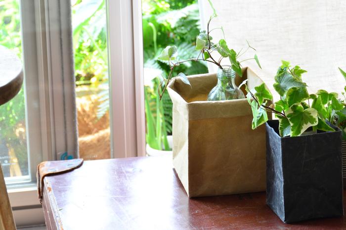 W13×D13×H18cmのボックスは、手紙を入れたり、キッチンクロス入れなどに使いやすいサイズです。また、SIWAのアイテムは耐久性もバッチリあるので、小さめの植物のプランターカバーにも適しています。