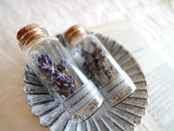 リラックス効果のある香りでお馴染みのラベンダーは、衣類と一緒に置いておくと穏やかな防虫効果を発揮してくれます。春らしい優しい香りに加えて虫除けもしてくれるなんて、本当に優秀ですよね。フレッシュなお花を楽しんだら、お部屋に干しておくだけで手軽にドライフラワーにできます。