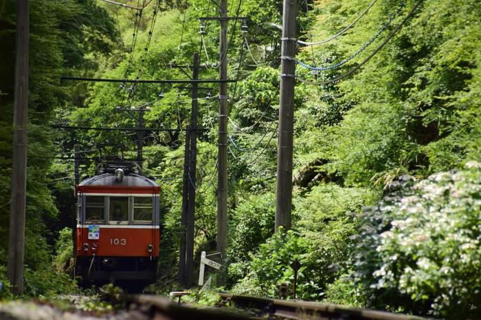 仕事をこなすように、あれもこれもとスポットや店を巡り、帰路でぐったりと疲れているのでは、旅に出る甲斐がありません。紹介してきたように「箱根」は、エリアによって景色がダイナミックに変わり、観光スポットも実に多彩です。  ぜひ記事を参考に、エリアの特徴を掴んでから、ご自身が望む旅に出掛けて下さい。  【箱根登山鉄道「大平台」駅周辺】