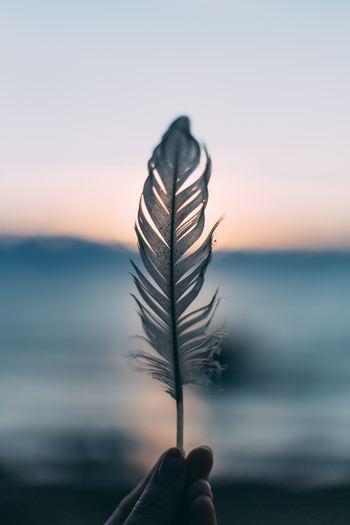「呼吸を整える」となぜ心身によい影響をもたらすのでしょうか。それは、自律神経やセロトニンの働きに関係しています。ここでは、そのメカニズムについてお伝えします。