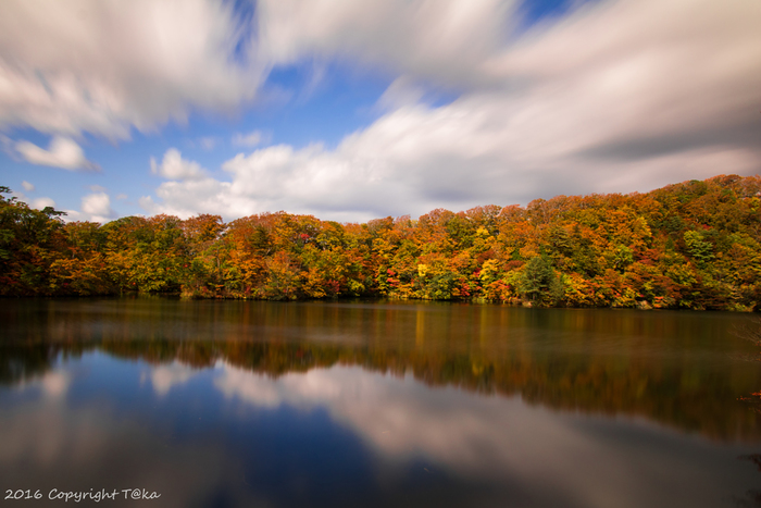 四季折々で美しい景色を見せてくれる白神山地ですが、晩秋の美しさは傑出しています。落葉樹の樹々が色鮮やかに染まり、風光明媚なこの地の美しさを引き立てています。