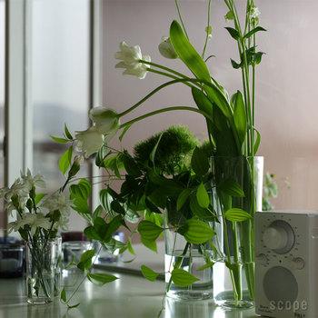 サイズは高さが12cmと24cmの二種類。小さいほうは気軽に野の花なんかを。大きいほうは大胆に花束やお好きな枝ものを何本も挿してみるととても素敵です!
