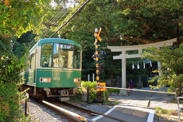 江ノ島電鉄長谷駅から徒歩5分のところにある「御霊神社」は、「江ノ電と鳥居の風景」が有名な神社です。緑があふれる景色の中、白い鳥居が佇み、その目前を江ノ電が颯爽と走り抜ける。とても珍しく鎌倉ならではの光景です。