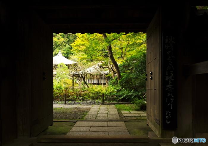 「瑞泉寺」は、JR鎌倉駅からバスに乗り、大塔宮で下車して徒歩15分の所にあります。山に囲まれた自然豊かな場所で、道に咲く花や植物を見ながら、気ままに歩いて向かう楽しみがあるお寺です。鎌倉の中心部からは少し離れているので、混雑を避けて静かに楽しみたい方におすすめです。