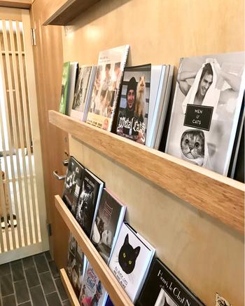店内では、愛らしい猫の絵本や写真集など、手に取ってじっくり読んでみたい本がずらりと並んでいます。