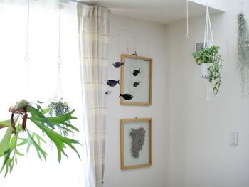観葉植物ポットを等間隔に一緒に吊るしても引き立ちますね。