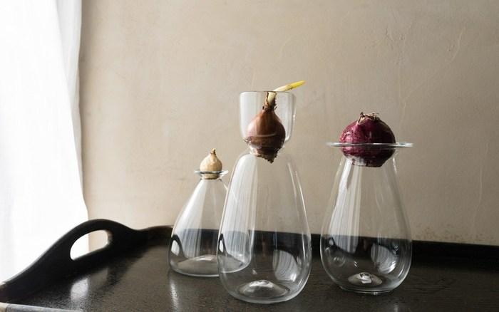 こちらは水耕栽培で使わないときは、花器としてお使いいただけます。他にありそうでない可愛らしいシルエットがとても素敵です。