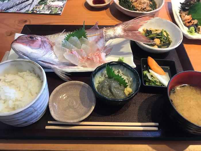 こちらは刺身定食。お頭付きの盛り付けが豪華! 生しらすと釜揚げしらすも小鉢で付いてくるので、お得感がありますね。魚の種類は時期によって異なります。