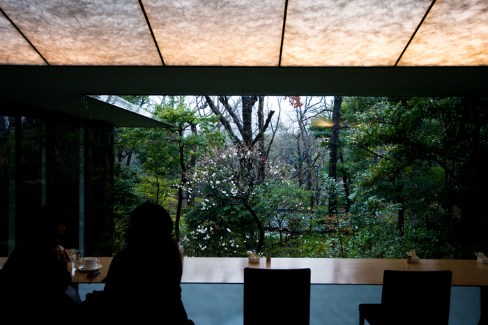 庭園内にはカフェが併設されており、ひと息つくのにおすすめです。都心とは思えないほどの緑豊かな日本庭園を眺めることができます。