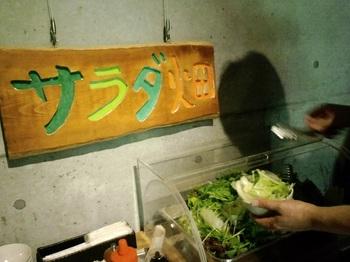 旬の地の野菜が食べ放題なサラダバー『サラダ畑』。