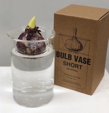 ビーカーと見せかけて、球根にとっても優しい仕掛けが施されているのがこちらフラワーベース、BULB VASE SHORTです。