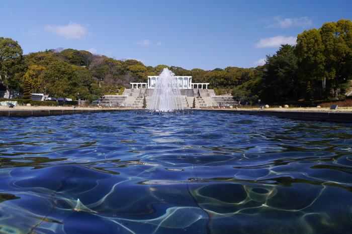 月見山と呼ばれるなだらかな丘陵地帯に広がる須磨離宮公園は、海を臨むことができる都市公園です。約82ヘクタールの敷地内には、公園のほか、植物園が併設されており、四季折々で美しい景色を臨むことが出来ます。