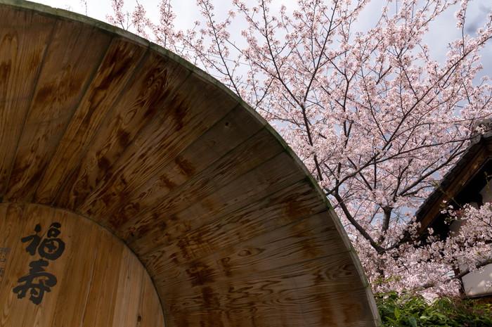 神戸は日本酒の街。蔵元『神戸酒心館』で日本酒の魅力をめぐる