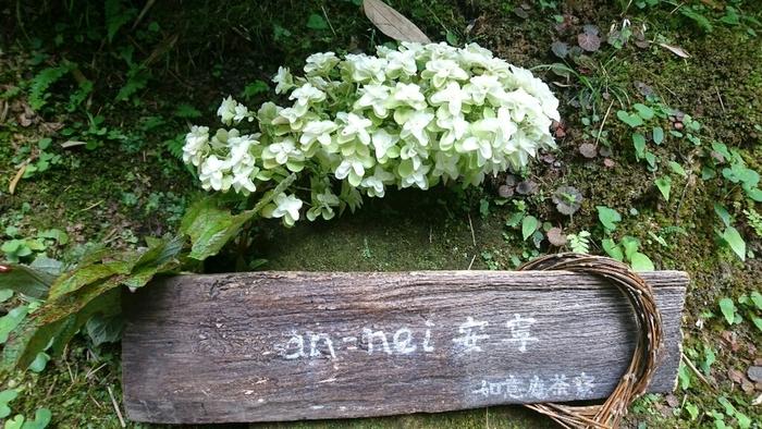 円覚寺の奥、如意庵の中にあるのが「安寧(an-nei)」という茶房です。木でつくられた看板には季節のお花が飾られています。素敵な心遣いは、お寺さんならではです。