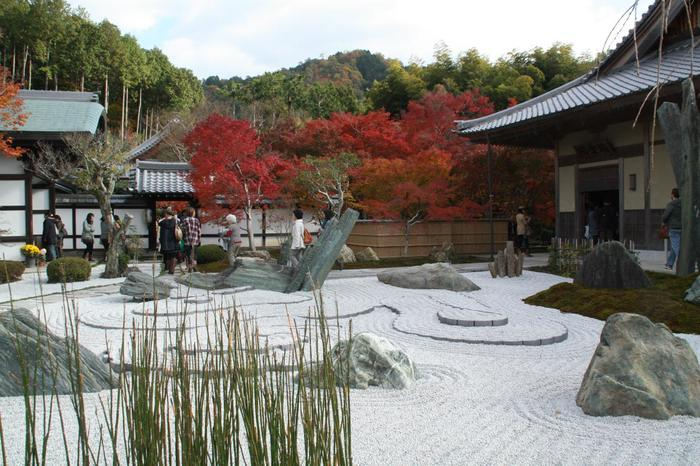 京都中心部から少し離れた一乗寺という地区にあるのが「瑞厳山 圓光寺(ずいがんざん えんこうじ)」です。圓光寺は、かの有名な徳川家康が開いた洛陽学校(学問所)が始まりだといわれています。明治以降は、日本で唯一の尼僧専門の道場として、近年まで尼僧が修行を行っていたそうです。