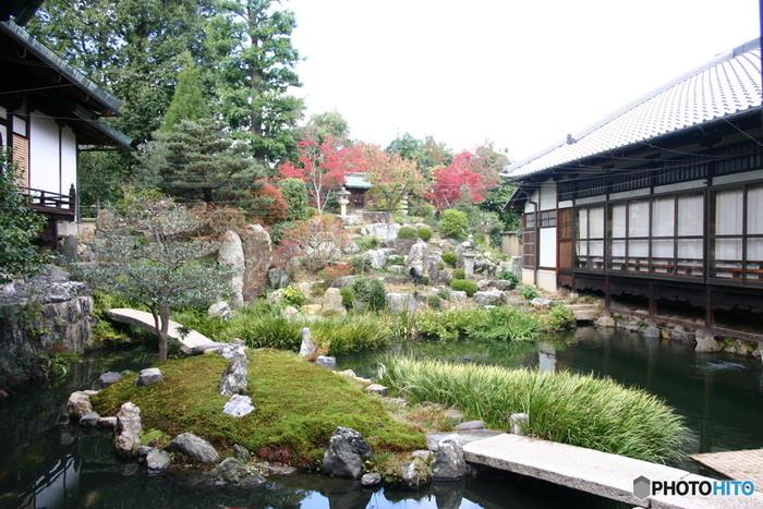 市バスの大徳寺前で下車し、徒歩で約10分のところにあるのが「大徳寺」です。大徳寺は鎌倉時代末期に創建され、戦国時代の幕開けとなった応仁の乱により一時は荒廃しましたが、とんちで知られる一休宗純和尚によって復興されました。大徳寺内にある「総見院」は、織田信長の菩提寺としても知られています。