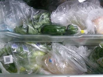 野菜が安いときにたくさん買ったけど、使い切れずに結局ダメにしてしまった。そんな経験がある方も多いのでは。野菜を茹でてラップして冷蔵庫で保存も良いけど、どうせなら冷凍保存をしてみませんか?  でも、野菜を冷凍保存すると、食感や味が落ちたり、水っぽくなったりすることがありますよね。