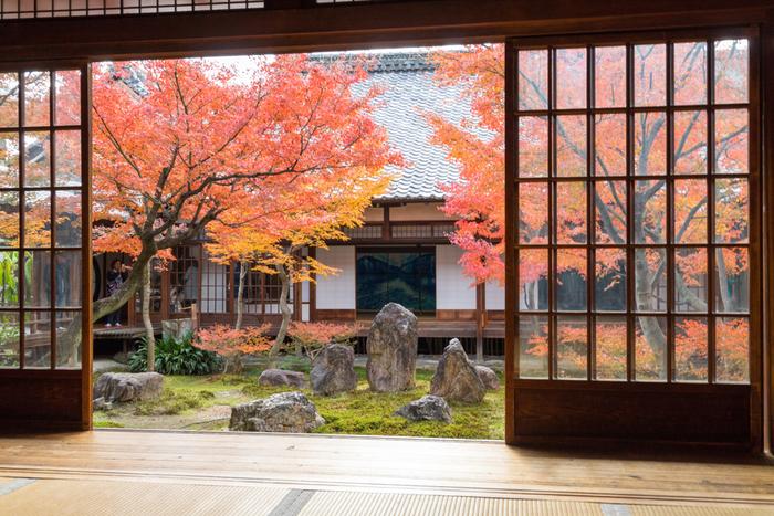 新緑に彩られた建仁寺も美しい景色です。秋になると中庭の木々が紅葉し、季節の移り変わりを知らせてくれます。こんな景色を眺めながら時間も忘れて、ただそこに座っているだけでも、心が洗われる気がしますね。