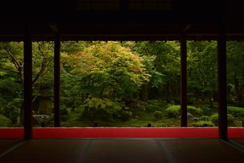 圓光寺では座禅体験することができます。座禅の他にも、作務(そうじなど)を行うことで雑念を払ったり、禅や仏法とは何かについての説法を受けることが可能です。さらに、修行のひとつでもあるという、お粥に沢庵と梅干しだけの質素な食事をいただく「粥坐」も行われています。