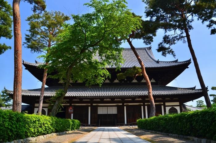 京都御所のすぐそばにある、日本最古の建物として知られる禅寺が「相国寺(しょうこくじ)」です。相国寺は、室町時代に足利義満によって創建されました。相国寺の塔頭寺院には、京都の観光スポットとして有名な金閣寺や銀閣寺があります。度重なる火災により、多くのものが焼失しましたが、豊臣秀頼の寄進によって再建された法堂が今も現存しています。
