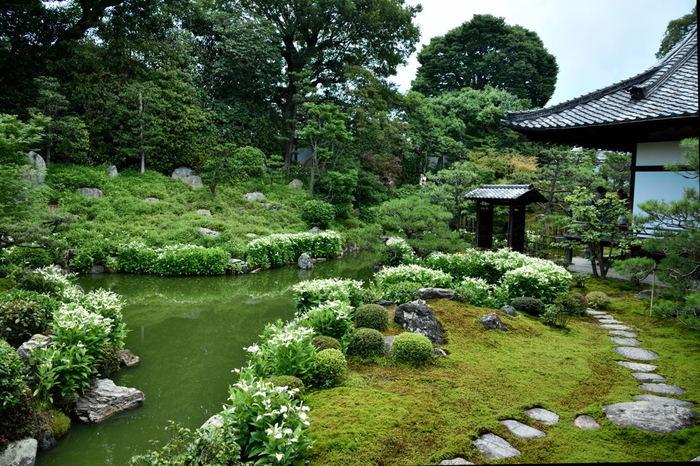 四条通と五条通の間に位置するのが「建仁寺(けんにんじ)」です。建仁寺は京都で最も古い禅寺で、一般非公開の塔頭「両足院(りょうそくいん)」では、写経や座禅を体験することができます。体験時のみ、特別公開されるため、普段は見られない貴重な機会となることでしょう。体験する際は事前予約が必要です。