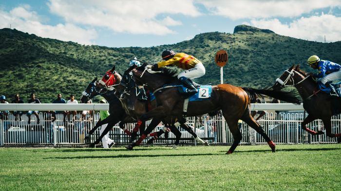 2006年に公開された実話を基にした映画「夢駆ける馬ドリーマー」は、ダコタ・ファニングが娘役をイキイキと演じきったハートウォーミングムービーです。競馬をテーマにした映画ですが、知識がなくても楽しめます。