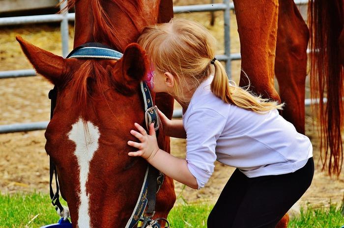 馬主から調教を依頼された牝馬・ソーニャドールが、レース中に転倒し骨折してしまい安楽死を命じられました。調教師のベンは娘ケールと一緒にその午を引き取りますが…。娘ケールの純粋でひたむきな想いと家族や仲間の愛情、ケンタッキーの美しい風景など、様々な魅力溢れる子供から大人まで楽しめる作品です。