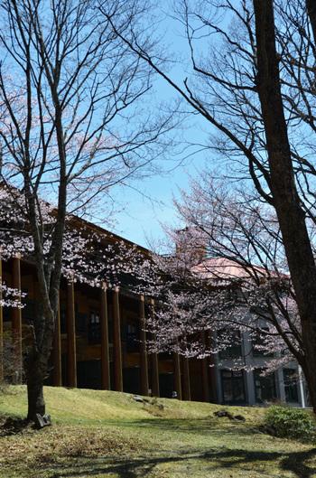 1940年(昭和15年)に創業した「中禅寺金谷ホテル」は、中禅寺湖畔の森の中にあります。設計は、カナダ人建築士のJ.スタージェス氏によるもので、木材を多く使っているのが特徴です。春は桜、秋は紅葉と季節ごとに変わる自然を楽しみに訪れるリピーターも多いホテルなんです。